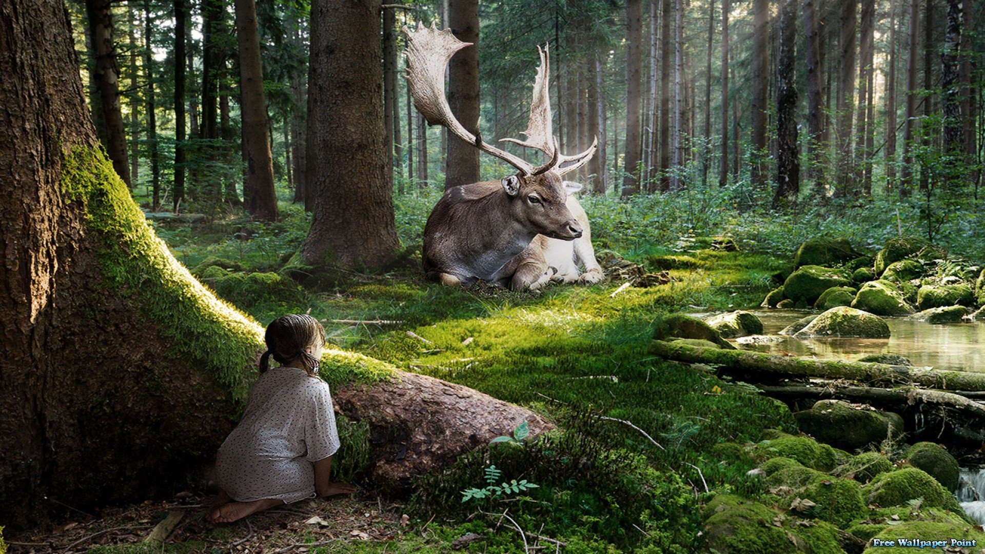 Fall Ceiling Wallpaper Download Fairytale Forest Moose 3d Wallpaper 1920x1080 486735