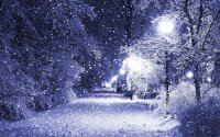 Winter snow lamp post wallpaper | 2560x1600 | 555336 ...