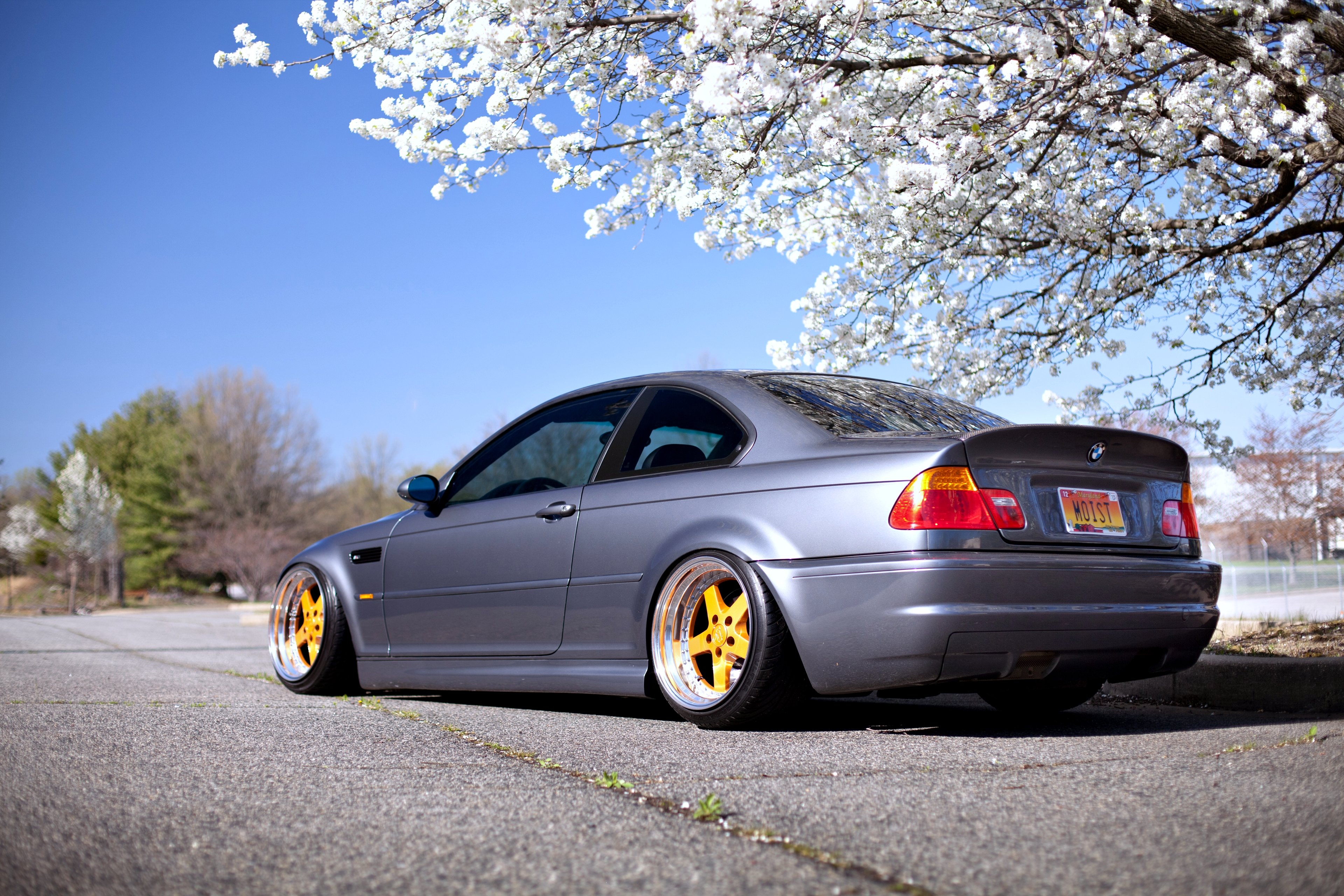 Hd Nfs Cars Wallpapers Bmw E46 M3 Series Gray Road Spring Speed Motors Cars