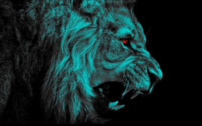 Red Cyan 3d Wallpapers Lion Wallpaper 1600x1100 112616 Wallpaperup