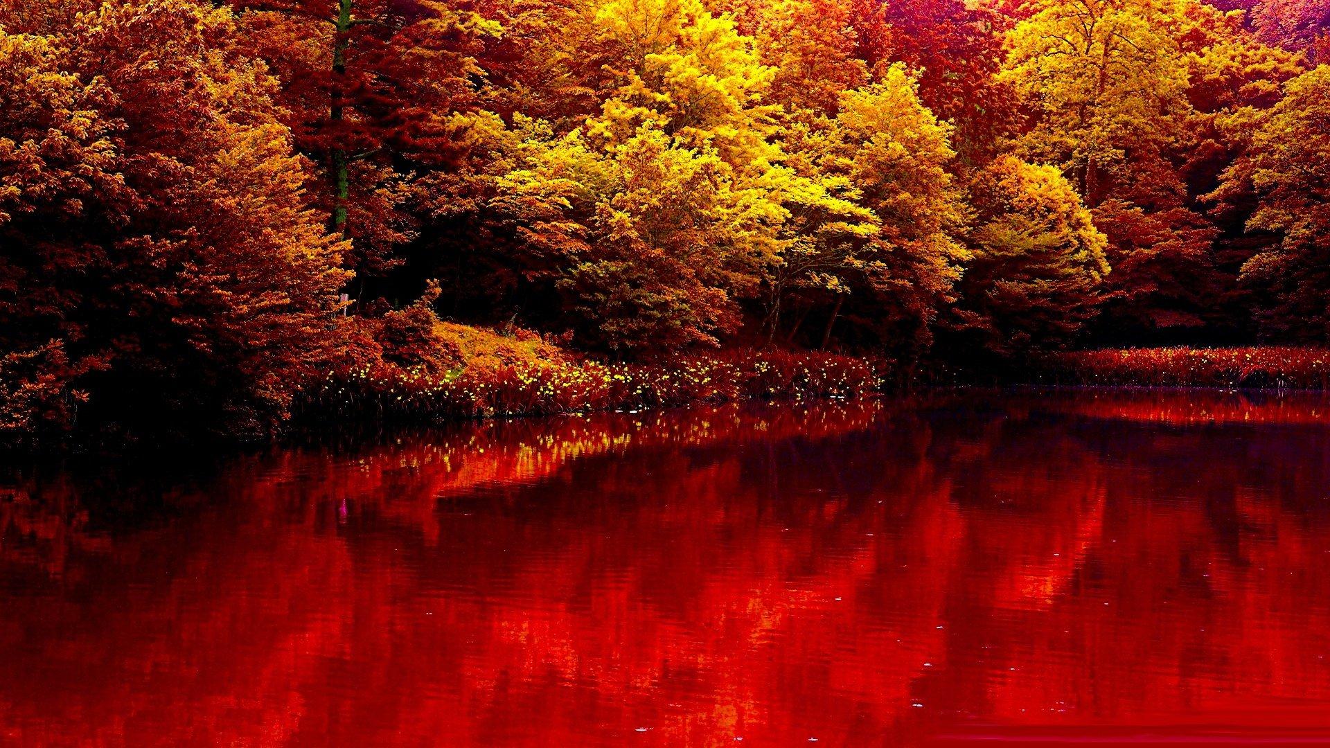 Free Fall Waterfall Desktop Wallpaper Nature Autumn Lake Forest Red Beauty Wallpaper 1920x1080