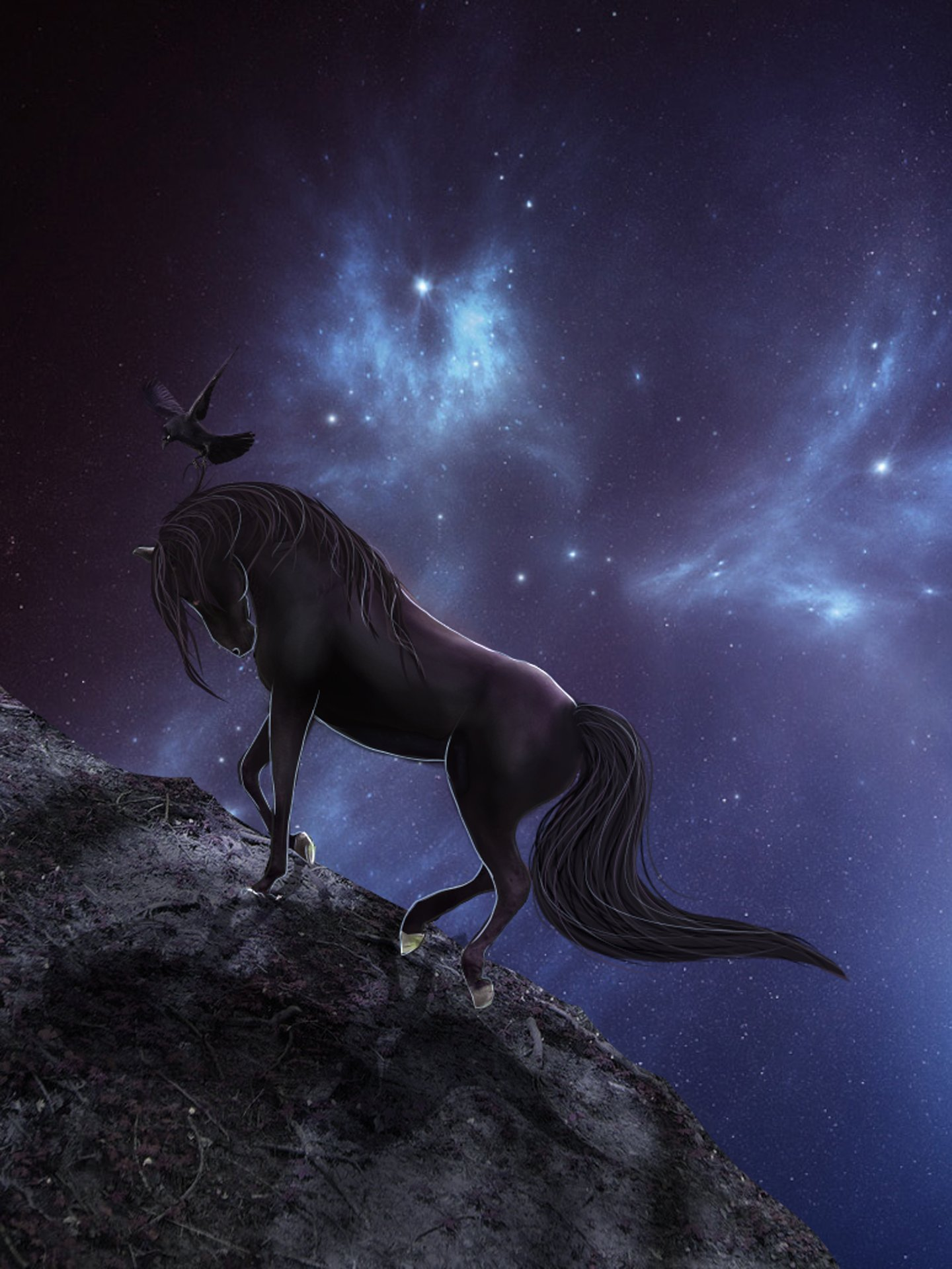 Unicorn 3d Wallpaper Fantasy Animal Horse Beautiful Sky Grow Wallpaper
