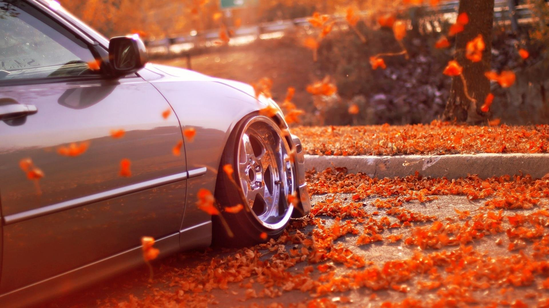 Fall Colors Wallpaper 1920x1080 Autumn Fall Landscape Nature Tree Forest Leaf Leaves Car