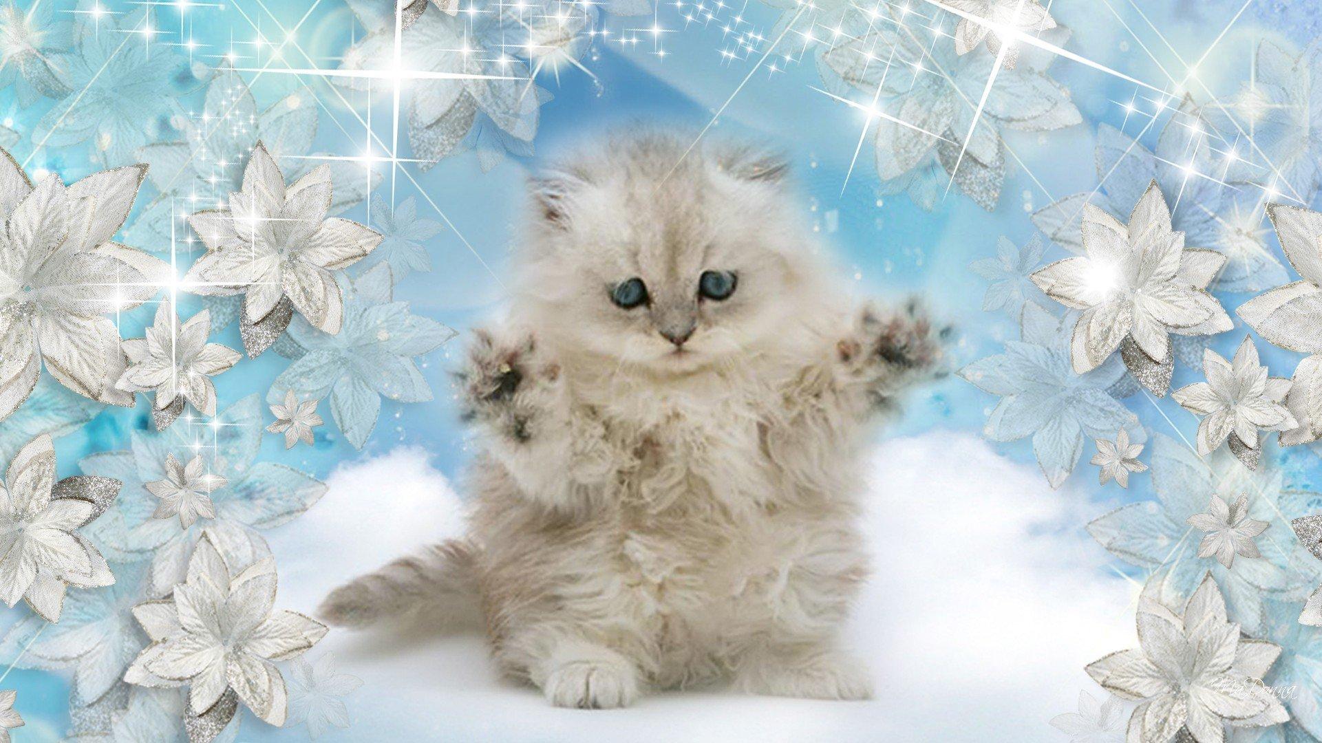 Falling Snow Wallpaper Widescreen Winter Snow Nature Landscape Baby Cat Kitten Wallpaper