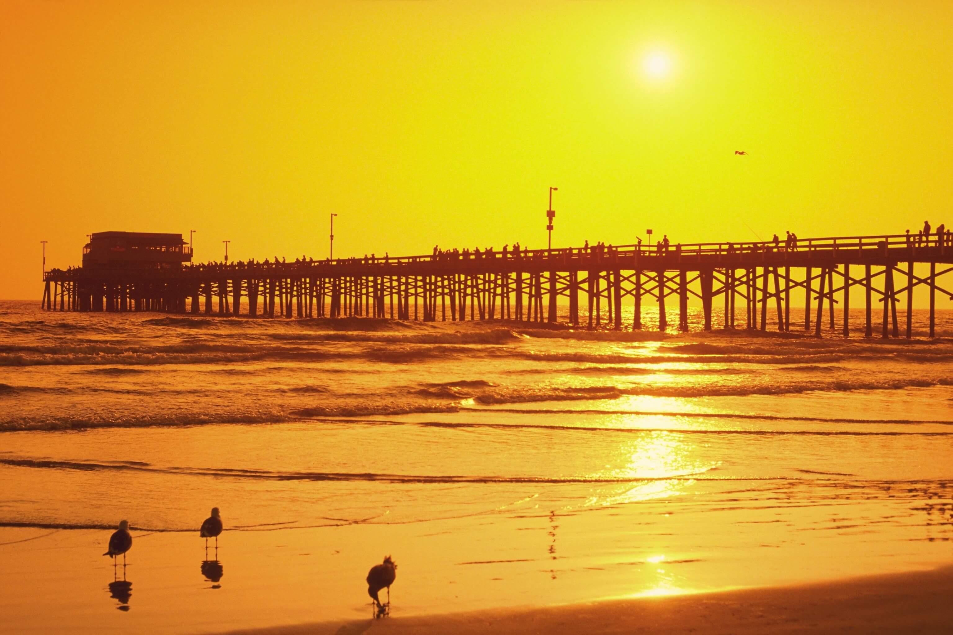 Beautiful Girl Hd Wallpapers 1080p Download California Background Wallpics