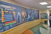 Educational Wallpaper Murals for Schools & Colleges