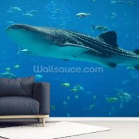 Whale Shark and Fish Wallpaper Mural | Wallsauce UK