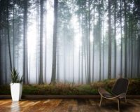 Forest Wallpaper & Tree Wallpaper Murals | Wallsauce UK