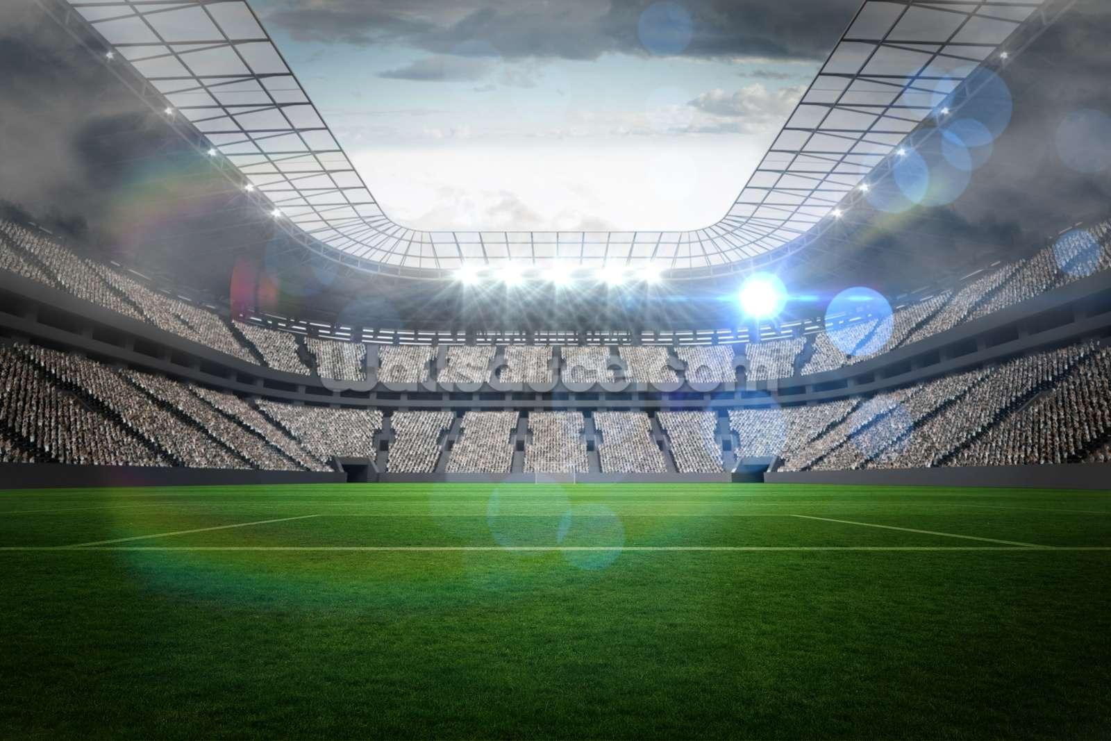 Oakland Raiders 3d Wallpaper Large Football Stadium With Lights Wallsauce Nz