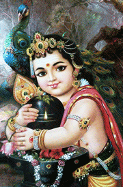Cute Child Couple Wallpaper Hd Hindu God Murugan Hd Wallpaper Lord Murugan Images Free