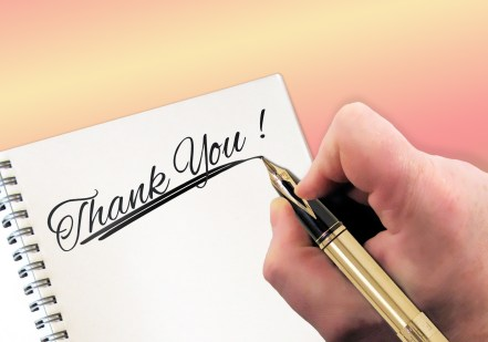 thank-you-227344