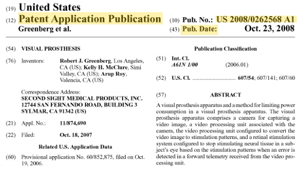 They Have a Patent, Or Do They? Granted Patents  Published - provisional patent application example