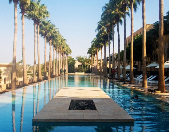 A long pool lined with tall palm tree's with a fire pit in the middle.