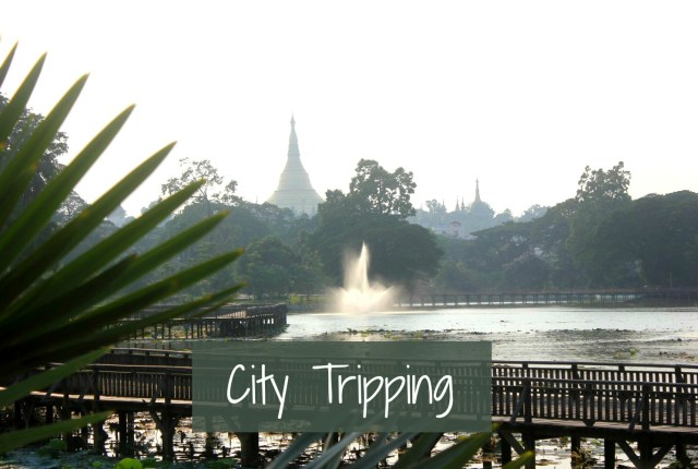 City Tripping 26