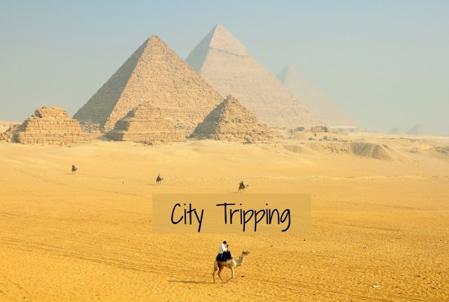 City Tripping 49