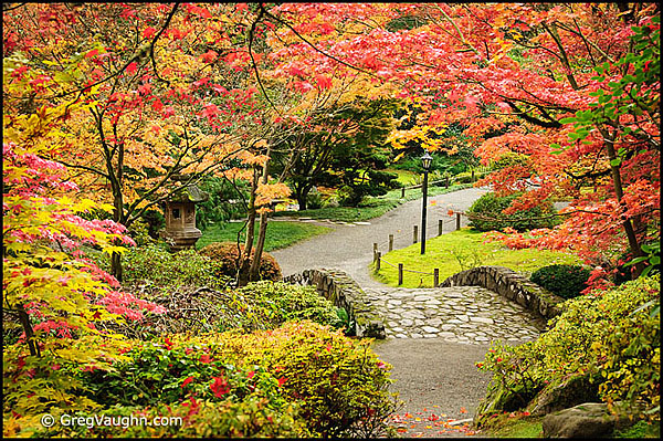 New England Fall Foliage Wallpaper Top 10 Places For Fall Color Photography In Washington
