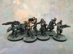 DZ - Enforcers
