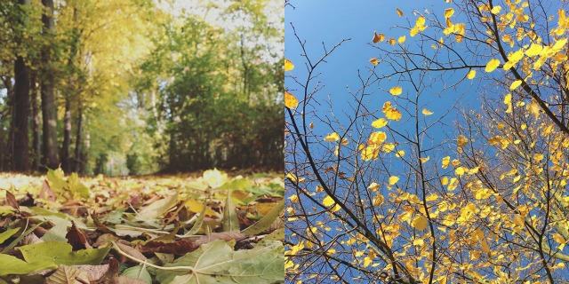 Monatsrückblick Oktober 2015 Instagram was eigenes Blog