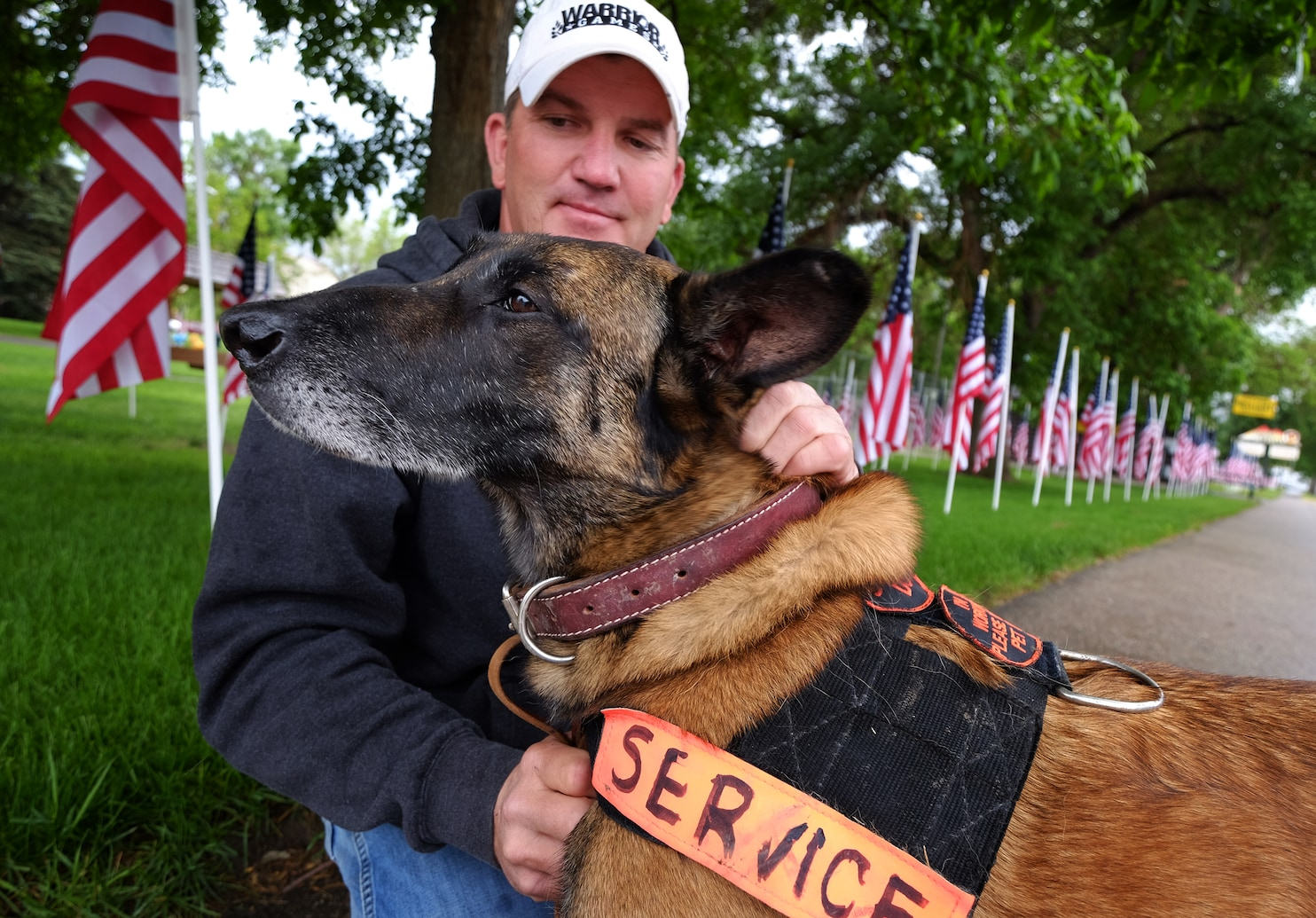Wondrous Wyoming Iraq Was Killed Iraq Was Killed Hisowner Wants To Know Washington Post A Combat Dog Who Earned Bronze Stars A Combat Dog Who Earned Bronze Stars bark post Holstered Attack Dog