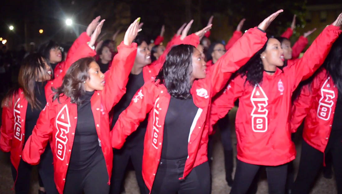 Slay This Is How The Ladies Of Delta Sigma Theta Do It At