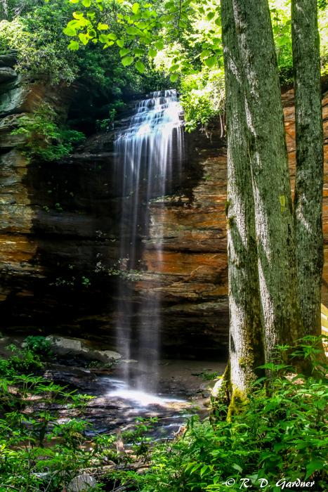 Fall Waterfall Wallpaper Moore Cove Falls Near Brevard North Carolina