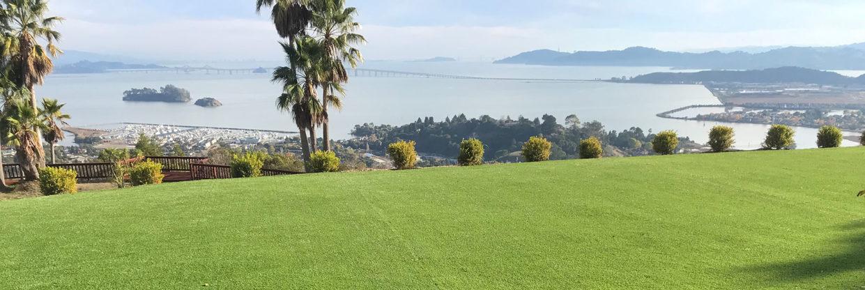 Artificial Turf Supplier - San Francisco Bay Area, CA Watersavers Turf