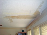 What To Do When Your Ceiling is Leaking - Waterview ...