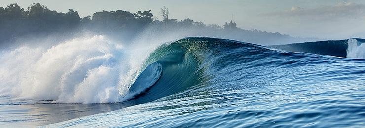 Wavehunters Surf Travel  Pelagic Surf Charters