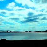 riverbank blue