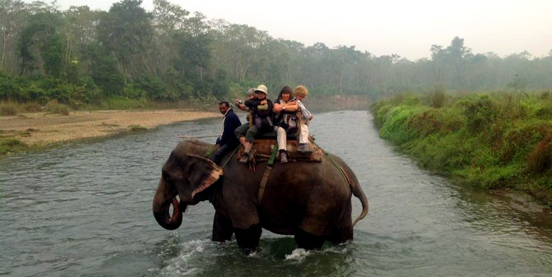 elephant-river-crossing-1100x820