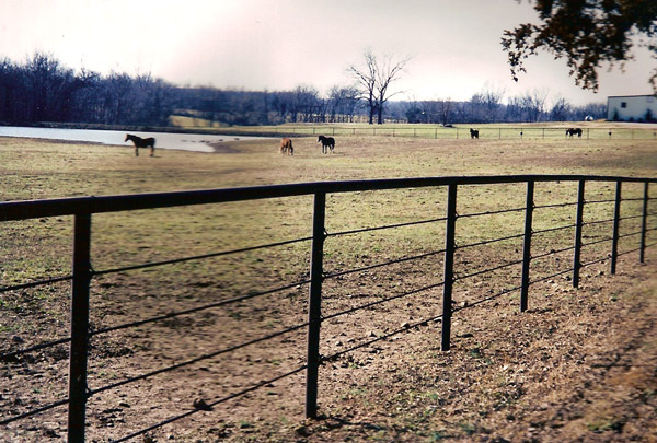 pipe fence - Bing Images Outsiders Pinterest Fences, Pipes and