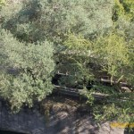 Wild-Africa-Trek-wdwradio-792