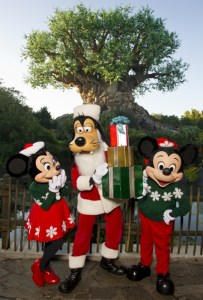 Animal-Kingdom-Christmas-Characters