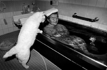 0aaamissao-and-fukumaru-bath1.jpg