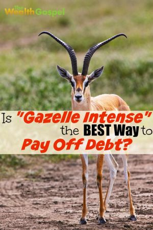 """Being """"gazelle intense"""" about your debt definitely works well for some people. But, is it the best way to pay off debt for everybody?"""