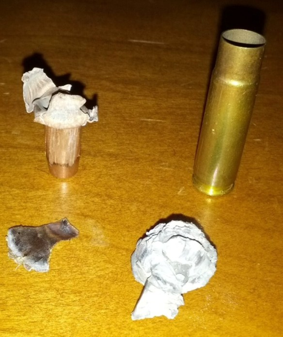 Empty Brass Casing & Recovered Round