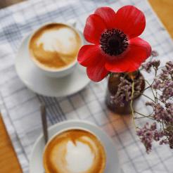 Cafe Johanna