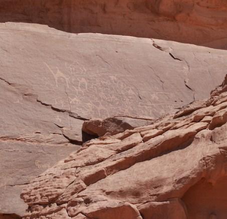 Kamelen tekeningen rotsen wadi rum