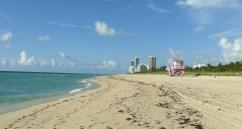 Miami tips