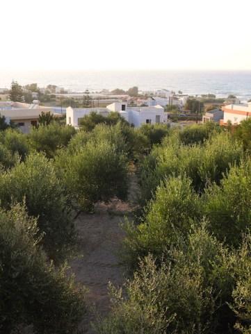 Roof with a view belvilla kreta