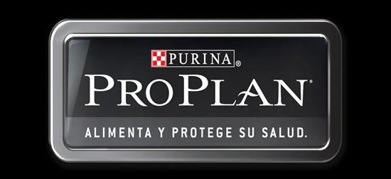 pro-plan-alimento-para-perros