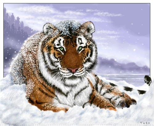 Cute Chinese New Year Wallpaper 17 Cool Chinese New Year 2010 Tiger Theme Wallpapers Web