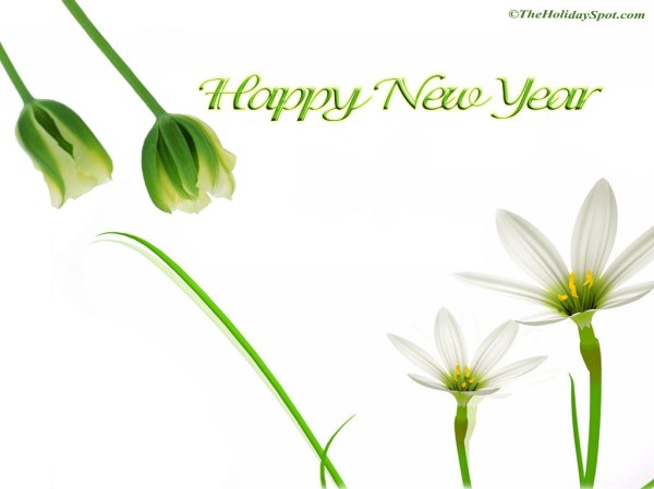 40 New Stirring Happy New Year 2012 Wallpapers. 1024 x 768.Happy New Year Greeting Samples For Business