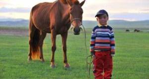 20110115001_horseman-bayar