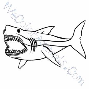 Beautiful Megalodon Shark And Jurassic World Mosasaur