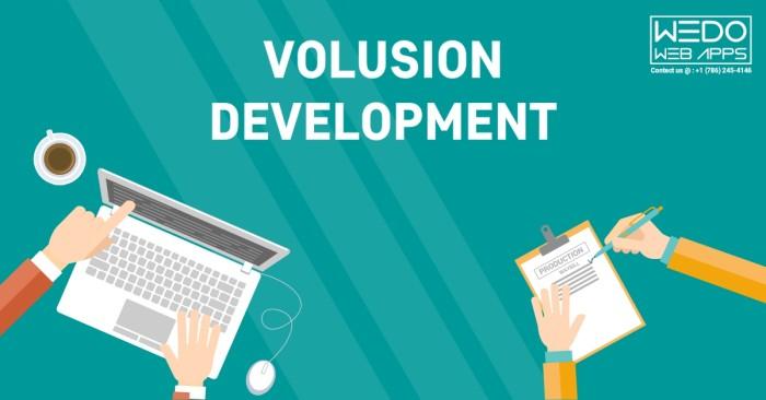 Volusion Development - Volusion Developer - Volusion Development Company
