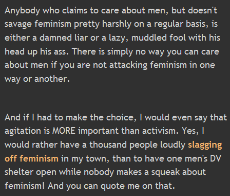 Anybody who claims to care about men, but doesn't savage feminism pretty harshly on a regular basis, is either a damned liar or a lazy, muddled fool with his head up his ass. There is simply no way you can care about men if you are not attacking feminism in one way or another.   And if I had to make the choice, I would even say that agitation is MORE important than activism. Yes, I would rather have a thousand people loudly slagging off feminism in my town, than to have one men's DV shelter open while nobody makes a squeak about feminism! And you can quote me on that.