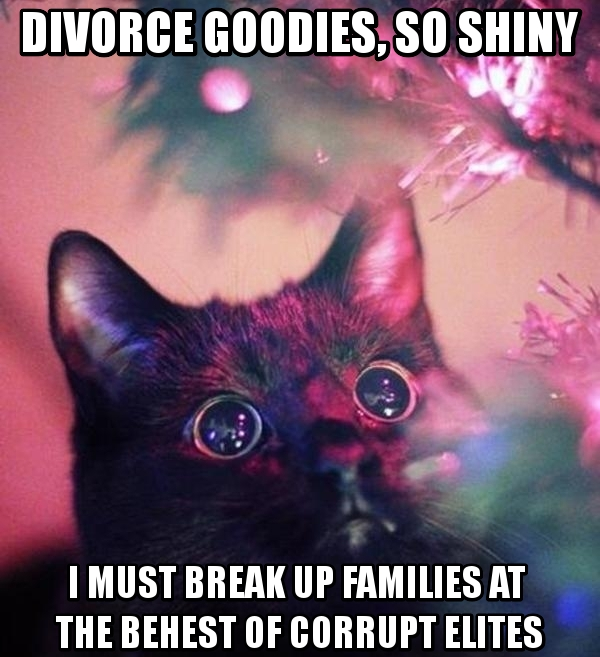 Woen, like cats, cannot resist shiny divorce goodies