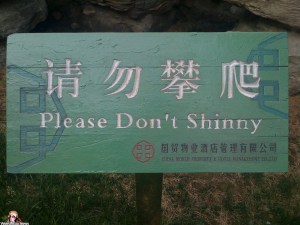 please-dont-shinny