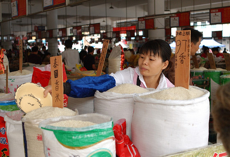 fake5 rice1 The 9 Most Controversial Food Scandals in China picture